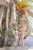 Piękna młoda kobieta na tropikalni plażowi pobliscy drzewka palmowe Fotografia Royalty Free