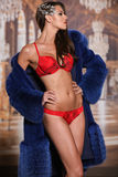 Piękna nęcąca młoda kobieta w czerwonej seksownej bieliźnie i eleganckim luksusowym futerkowym żakiecie Obrazy Royalty Free