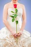 piękna panna młoda Obraz Royalty Free