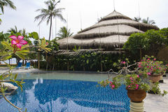 Piękna scena i natura w Bali, Indonezja Zdjęcie Royalty Free