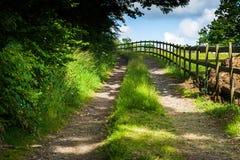 piękna wieś dni drogi lato Zdjęcie Royalty Free