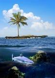 Piękna wyspa z drzewkami palmowymi i niebieskim niebem Rekin podwodny Fotografia Royalty Free