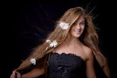 piękne włosy Fotografia Stock
