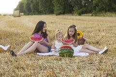 piknik Fotografia Stock