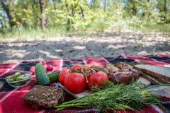 piknik Czerwona szkocka krata ?wiezi warzywa, chleb na kt?rym k?ama pyknicznego jedzenie, grill, kie?basy na ogieniu Sk?ad, ?wie? zdjęcie royalty free