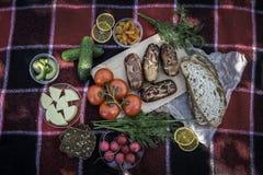 piknik Czerwona szkocka krata ?wiezi warzywa, chleb na kt?rym k?ama pyknicznego jedzenie, grill, kie?basy na ogieniu Sk?ad, ?wie? obraz royalty free
