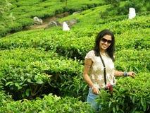 piękno hindus Fotografia Stock