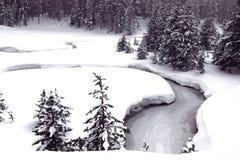 piękno zima s Fotografia Royalty Free