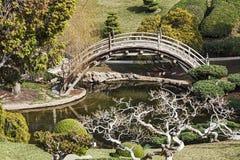 Japończyka ogród Zdjęcie Stock