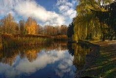 piękny jesienny park Zdjęcia Royalty Free