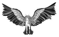 Piękny koń z grzywy i czerni skrzydłami pegasus Obrazy Stock
