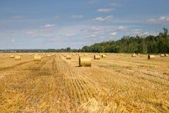 Piękny krajobraz z słomianymi belami Obraz Royalty Free