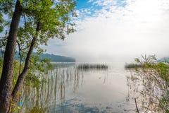 Piękny mglisty ranek przy jeziorem Zdjęcia Stock