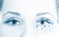 piękny oka kobiety macro Zdjęcie Royalty Free