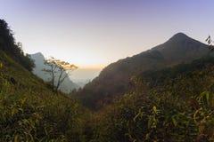 Piękny zmierzch przy zmierzchem w tropikalnym lesie deszczowym Fotografia Royalty Free