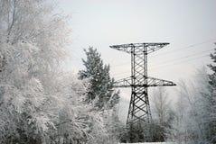 Pilón de la electricidad en bosque Fotos de archivo