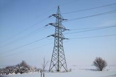 Pilón en invierno Imagen de archivo libre de regalías