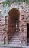Pilögla, Kenilworth slottdetaljer i England Arkivfoto