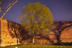 pil för vägg för park för green för beijing porslinstad Royaltyfri Fotografi