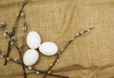 Pil och ägg, easter bakgrund royaltyfri fotografi