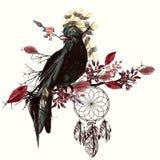 Pil och dreamcatcher för härlig fågel hållande vektor illustrationer