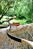 Pil och pilbåge som vilar på ett träd Royaltyfria Bilder