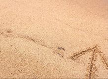 Pil på sand som pekar upp arkivfoto