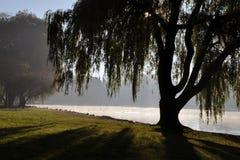 Pil på sjön Arkivfoto
