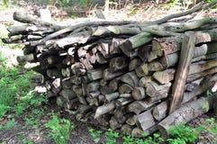 Pila 1 della legna da ardere Immagine Stock