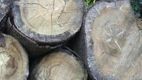 Pila con madera del fuego almacen de metraje de vídeo