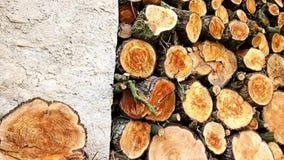 Pila con madera del fuego almacen de video