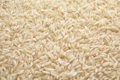 Pila de arroz crudo como fondo imágenes de archivo libres de regalías
