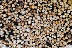 Pila de bambú Fotografía de archivo libre de regalías