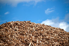 Pila de biomasa Imagen de archivo libre de regalías