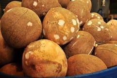 Pila de cáscaras del coco Imagenes de archivo