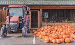 Pila de calabazas al lado del tractor en el soporte de la granja en otoño fotos de archivo