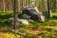 Pila de cantos rodados en bosque Foto de archivo