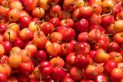 Pila de cerezas Foto de archivo libre de regalías