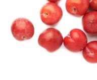 Pila de ciruelos rojos múltiples aislados Fotos de archivo