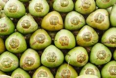 Pila de cocos verdes frescos Foto de archivo