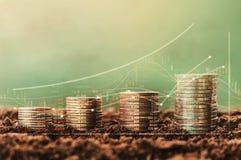 pila de dinero del crecimiento de la moneda y árbol, carta de los datos del concepto del fina Imágenes de archivo libres de regalías