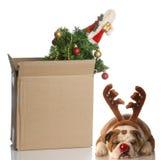 Pila de discos encima de la Navidad Fotos de archivo