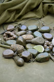 Pila de diversos pesos formados de la ventaja de la pesca de la carpa Imagenes de archivo