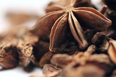 Pila de frutas y de semillas del anís de estrella Imagen de archivo libre de regalías