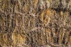 Pila de heno en granero Fotografía de archivo