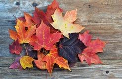 Pila de hojas de la caída Fotos de archivo