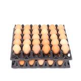 Pila de huevos en bandeja en blanco Foto de archivo