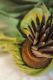 Pila de lápices de madera del color Fotos de archivo libres de regalías