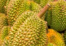 Pila de la fruta del Durian en mercado Durian exótico de la fruta para la venta Fruta tropical dulce con el olor stinky foto de archivo