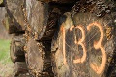 Pila 133 de la madera de construcción Fotos de archivo